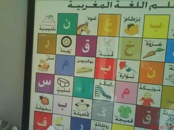 Photo of قاموس أو كابوس الدارجة لنور الدين عيوش