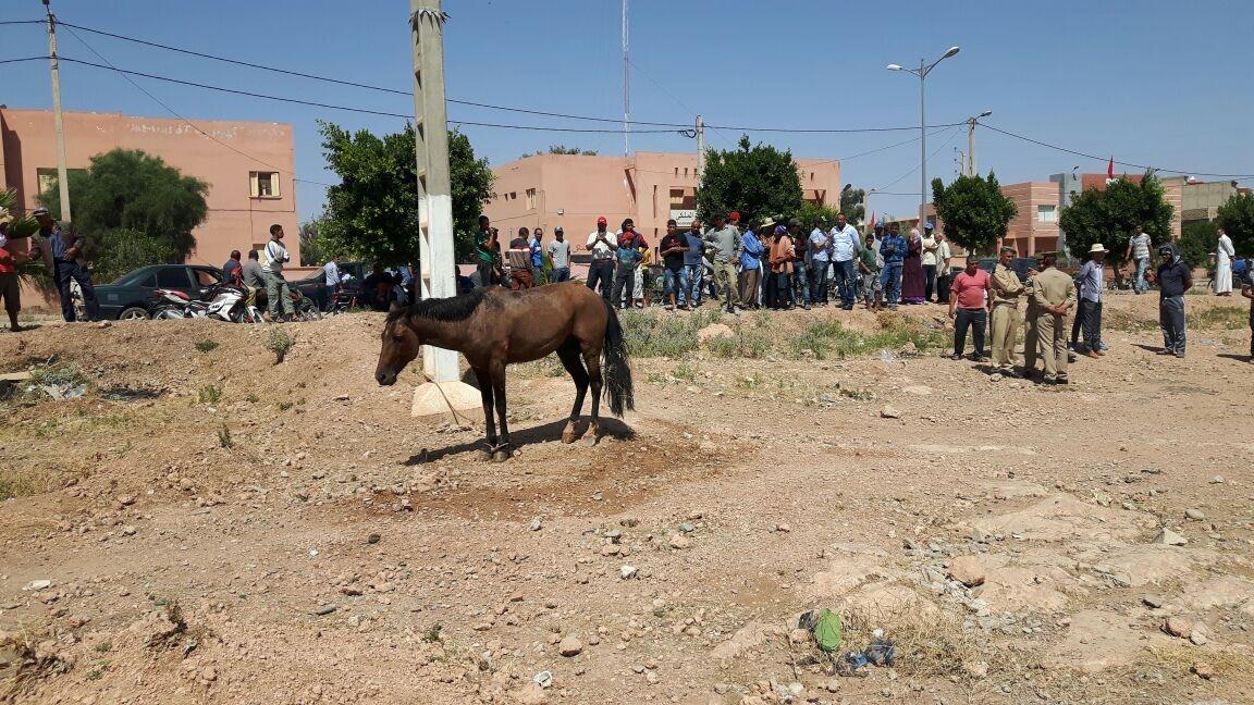 Photo of بيان فرعي المركز المغربي لحقوق الإنسان باحد بوموسى ودار ولد زيدوح