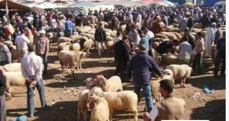 Photo of ثقافة عيد الأضحى و أشياء أخرى