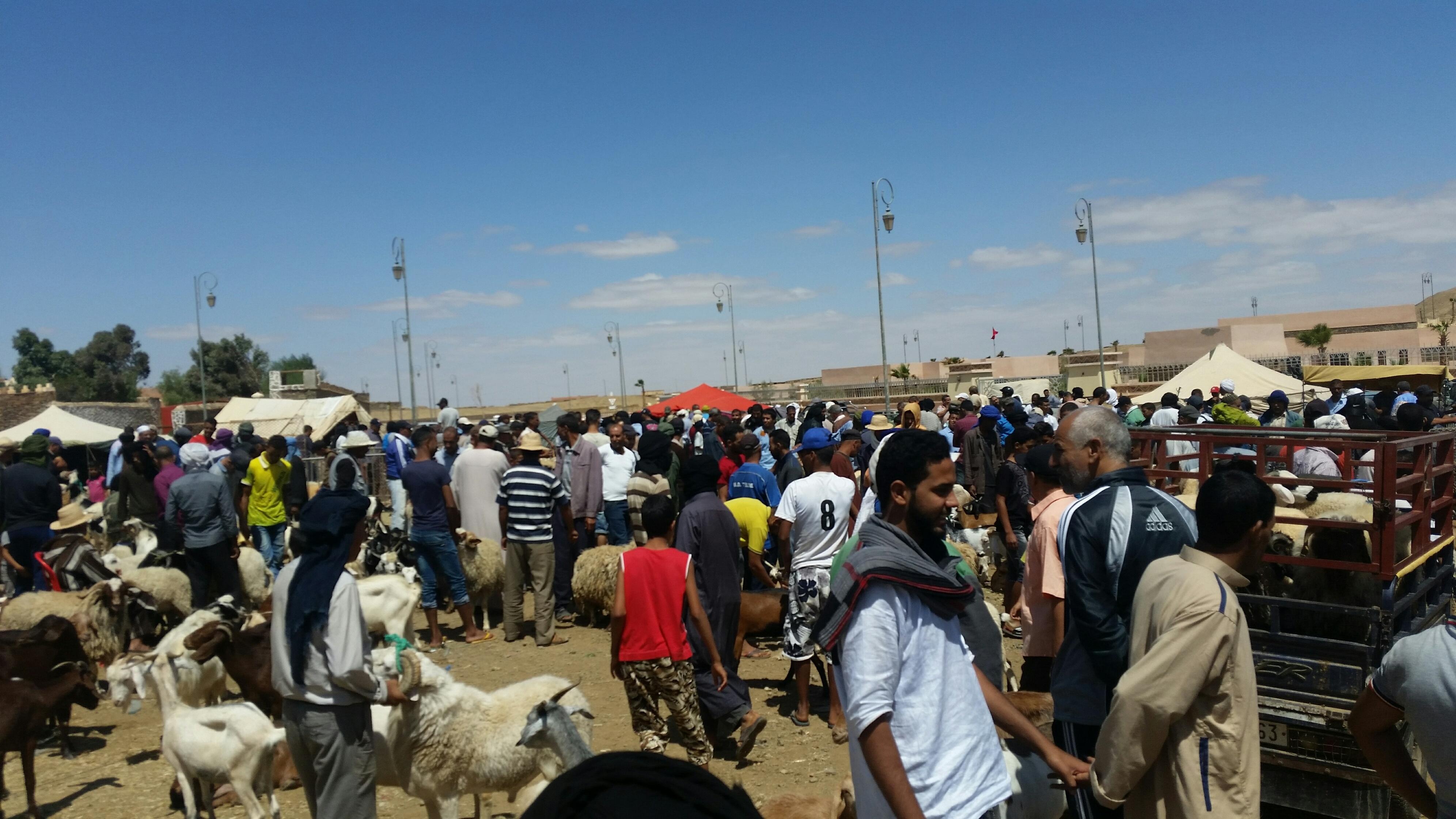 Photo of المواطنون المغاربة بين مطرقة عيد الأضحى  وسندان الدخول المدرسي
