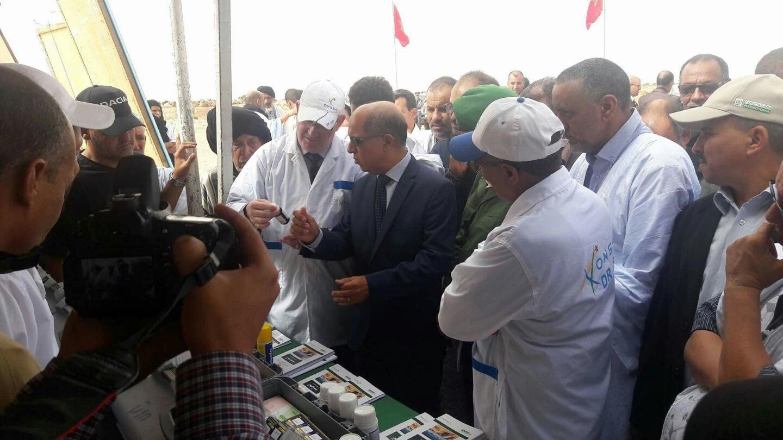 Photo of عامل إقليم السمارة يشرف على انطلاق حملة بيطرية تستهدف قطيع الإبل بالسمارة