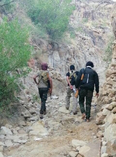 Photo of اليمن / الجيش الوطني يصل قرية آل جراد التابعة لمديرية باقم ويحرر عددا من المواقع