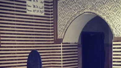 Photo of جامعة الحمامات ترفع مطالب المهنيين للحكومة
