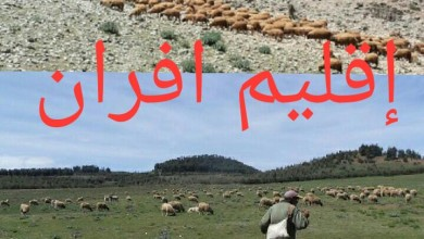 Photo of أزرو / فلاحون بين مطرقة جائحة كورونا وسندان القوة القاهرة وشماتة اللصوص