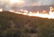Photo of جرسيف / حريق يدمر 15 هكتارا من الغطاء الغبوي