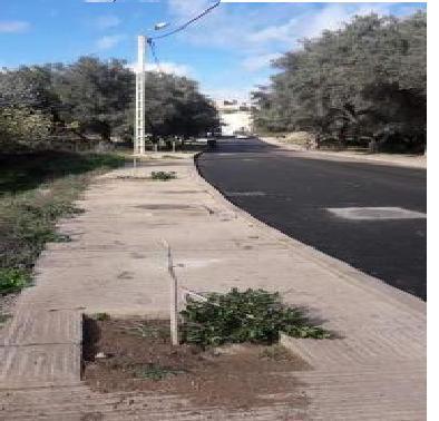 Photo of إقليم صفرو / إتلاف شجيرات الأحياء من طرف مجهول يثير استنكار ساكنة مدينة المنزل
