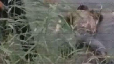 Photo of خنيفرة / العثور على جثة شخص قرب مجزرة إمالو اغريبن خنيفرة